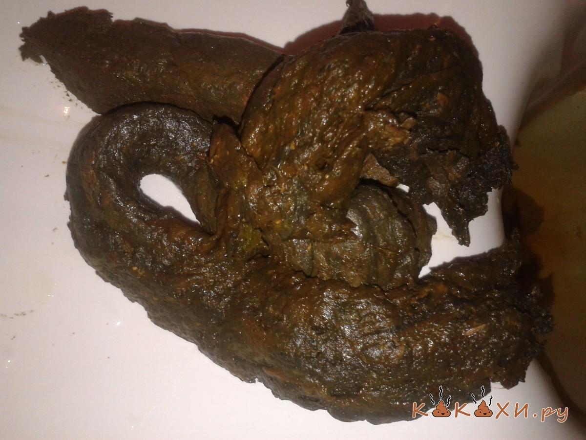 Какашка Черные какашки после угля