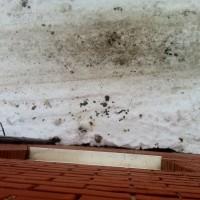 А из нашего окна куча говнеца видна )